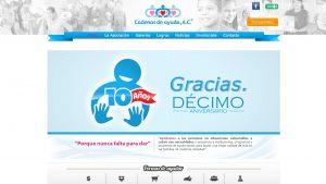 paginas.web.ONG