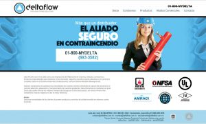 web-flow-mexicali-delta